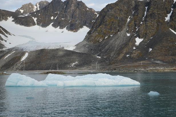 ice and masts
